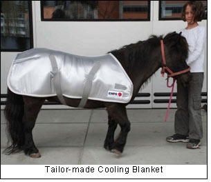 Tailor-made Cooling Blanket