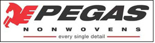 PEGAS NONWOVENS increases revenues to EUR 110.8 mn