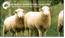 Bud Gutzman & Jim Elliott receive Wool Excellence Awards