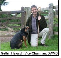 Gethin Havard - Vice-Chairman, BWMB