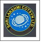 Shri Lakshmi Cotsyn Q4FY10 net sales up 28.20%