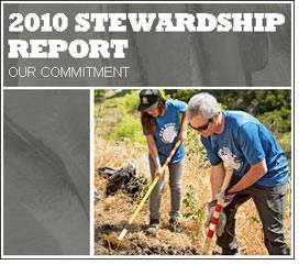 REI's Stewardship Report highlights environmental sustainability