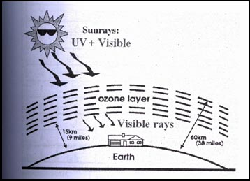 term paper on ozone depletion 2017-10-26  ozone layer ozone layer research papers discuss the depletion of the the ozone layer in the atmosphere the ozone layer has been identified in term papers as important in the overall spectrum of the atmosphere.