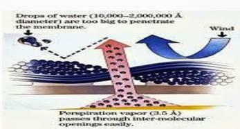 http://2.bp.blogspot.com/-Owx-_GLyzVA/Ua26RuhD4lI/AAAAAAAAHgY/Jc2oPGDvs8Y/s1600/breathable-sportswear.jpg