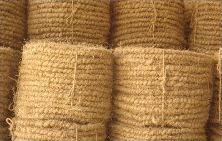 Coir geo-textile to fortify Kerala