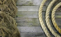 Advantages of jute as natural bast fibre for different technical textiles
