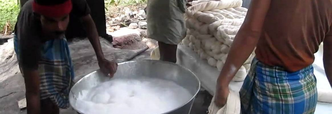 Bleaching of Cotton Fabrics: Recent Developments