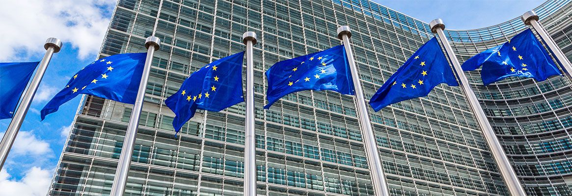 The EU Goes in for Major Regulatory Moves